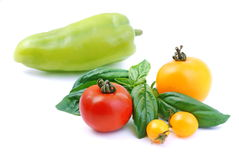 Vegetablle Stock Images
