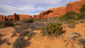 Vegetación seca en el parque nacional de los arcos en el desierto de Utah almacen de metraje de vídeo
