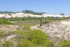 Vegetación sobre las dunas en el parque de Itapeva en la playa de Torres imagen de archivo
