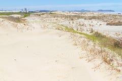 Vegetación sobre las dunas en el parque de Itapeva en la playa de Torres Foto de archivo libre de regalías