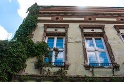 Vegetación verde de la enredadera en casa residentual vieja Foto de archivo libre de regalías