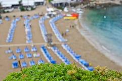 Vegetación verde y una playa en tiempo de verano Foto de archivo libre de regalías