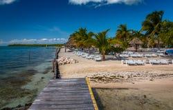 Vegetación y Palapas en la isla caribeña hermosa de Belice fotos de archivo
