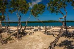 Vegetaci?n y Palapas en la isla caribe?a hermosa de Belice foto de archivo libre de regalías