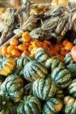 Vegetais 2 da queda Foto de Stock