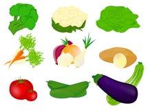 Vegetais ilustração do vetor