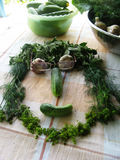 vegetais Imagem de Stock Royalty Free