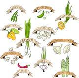 Vegetais ajustados Fotografia de Stock Royalty Free