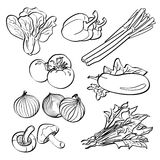 Vegetais ajustados Imagens de Stock Royalty Free