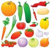 Vegetais ajustados com esboços da cor Foto de Stock Royalty Free