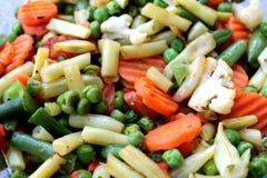 Vegetais Assorted Fotografia de Stock Royalty Free