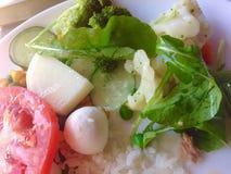 Vegetais Assorted Fotos de Stock Royalty Free