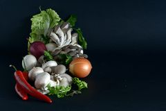 Vegetais Assorted Fotografia de Stock