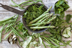 Vegetais caseiros e ervas Fotografia de Stock Royalty Free