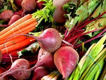 Vegetais coloridos Imagens de Stock Royalty Free