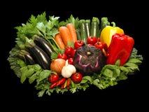 Vegetais coloridos Foto de Stock Royalty Free
