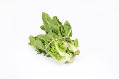Vegetais com corda Imagens de Stock