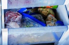 Vegetais congelados no congelador Fotos de Stock Royalty Free