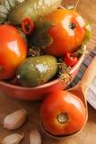 Vegetais conservados. Imagem de Stock Royalty Free
