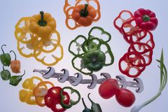 Vegetais cortados Foto de Stock