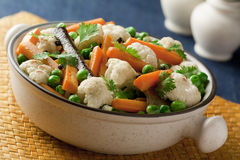 Vegetais cozinhados e feitos saltar com especiarias Fotos de Stock Royalty Free