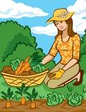 Vegetais crescentes em um jardim Home Fotos de Stock Royalty Free