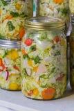 Vegetais cultivados ou fermentados da casa feita Imagens de Stock Royalty Free
