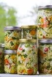 Vegetais cultivados ou fermentados da casa feita Foto de Stock Royalty Free