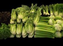 Vegetais da alface, do aipo, dos alho-porros, e da couve-rábano Foto de Stock Royalty Free