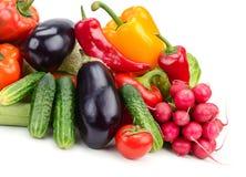 Vegetais da coleção Fotos de Stock Royalty Free