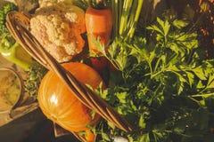 Vegetais da exploração agrícola na cesta Jardim fresco vegetal orgânico imagem de stock