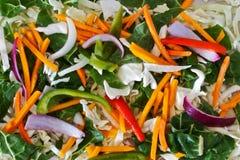 Vegetais da fritada do Stir Foto de Stock Royalty Free
