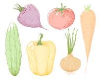 Vegetais da ilustração do vetor. Foto de Stock Royalty Free