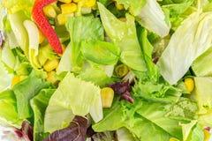 Vegetais da mistura II Imagens de Stock