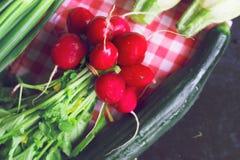 Vegetais da mola Fotos de Stock