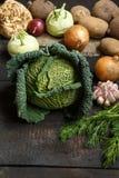 Vegetais da mola em um fundo escuro: Couve-de-milão, couve-flor, cebola, alho, couve-rábano, raiz de aipo, aneto Imagens de Stock Royalty Free