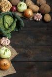 Vegetais da mola em um fundo escuro: Couve-de-milão, couve-flor, cebola, alho, couve-rábano, raiz de aipo, aneto Fotografia de Stock