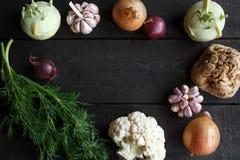 Vegetais da mola em um fundo escuro: couve-flor, cebola, alho, couve-rábano, raiz de aipo, aneto Imagens de Stock