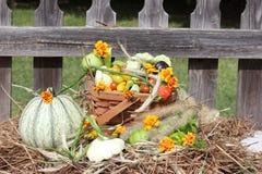 Vegetais da queda na cesta sobre a palha ou o feno fotos de stock