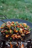 Vegetais da repreensão em exterior Produto-vegetais frescos de vegetables imagem de stock