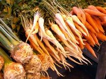 Vegetais da sopa Fotos de Stock Royalty Free