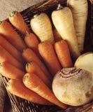 Vegetais de raiz Fotografia de Stock Royalty Free