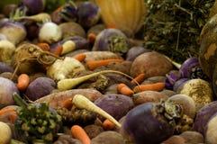 Vegetais de raiz Foto de Stock Royalty Free
