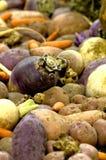 Vegetais de raiz Imagem de Stock Royalty Free