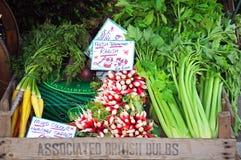 Vegetais de salada na caixa Imagem de Stock Royalty Free