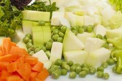 Vegetais desbastados para a sopa Fotografia de Stock