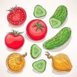 Vegetais desenhados à mão Fotos de Stock Royalty Free