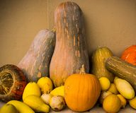Vegetais diferentes foto de stock royalty free