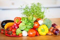 Vegetais diferentes ajustados Imagens de Stock