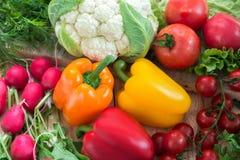 Vegetais diferentes como tomates, couve-flor, pimentas, rabanete Foto de Stock